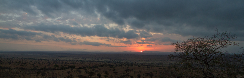 Sunrise. African Safari 2012- Tanzania, Photograph by Stephen Powell wildlife Artist and Photographer