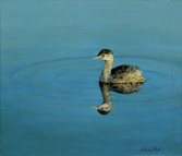 Grebe Oil Painting by Stephen Powell