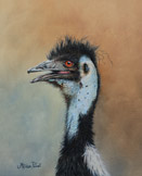 Emu - Oil painting by Stephen Powell
