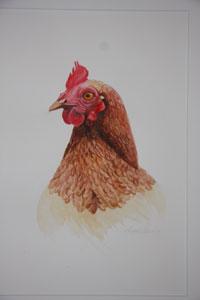 Chicken by Robyne Berling