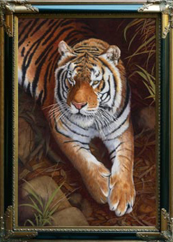 Bengal Tiger framed painting by Stephen powell